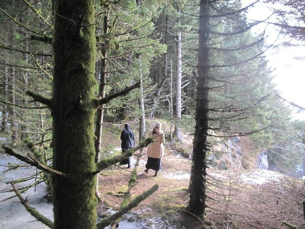 19 drumul dintre chilie si trapeza,  Nilus Island Alaska
