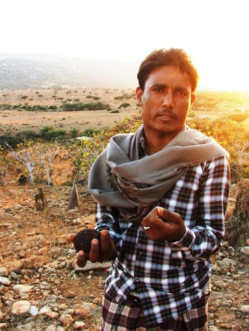 Abdullah, ghidul nostru din Socotra. Rasina de arborele Sangele Dragonului