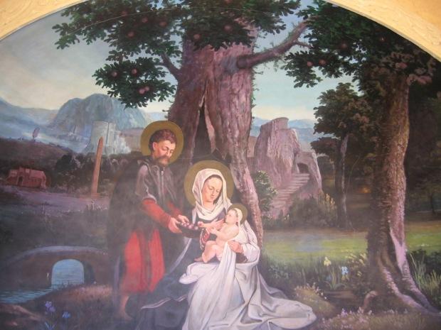 29 Matariyah, Copacum Fecioarei Maria.JPG