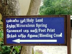 6, Chennai, Muntele mic , la Sf Ap Toma